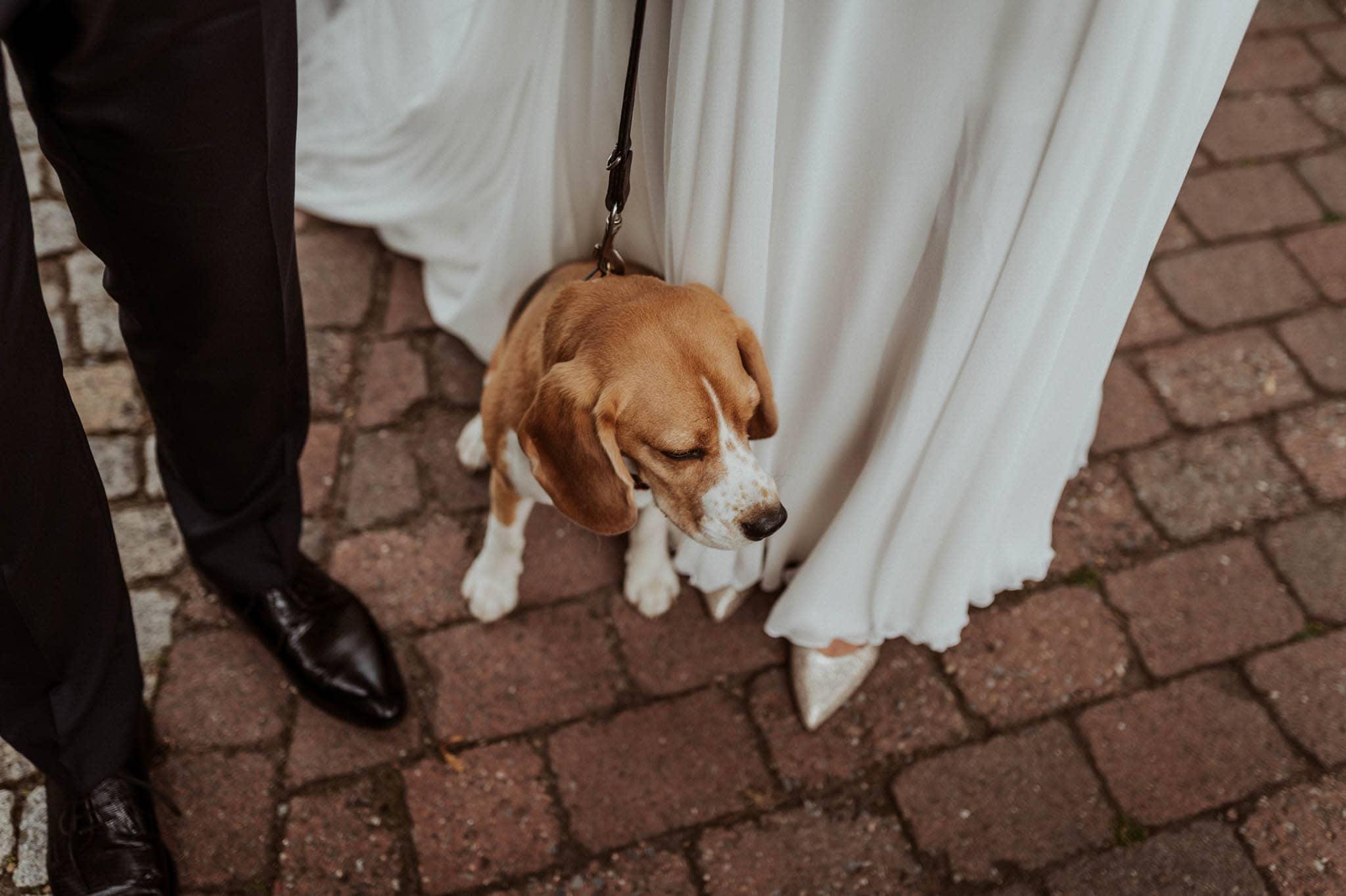 Hochzeitsfieber by Photo-Schomburg, Hochzeitsfotograf, Hamburg, Bremen, Hochzeitstag, Hochzeitspaar, Braut, Bräutigam, Bremen-Kränholm,Knoops Park-119
